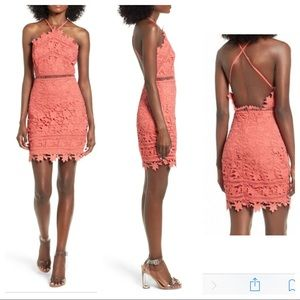 NWT ASTR Lace Bodycon Dress Open Back sz. M